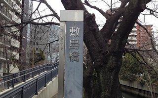 7)石崎川にかかる敷島橋も越えて直進
